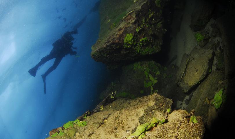 Подледный дайвинг на Байкале фото О.Каменской