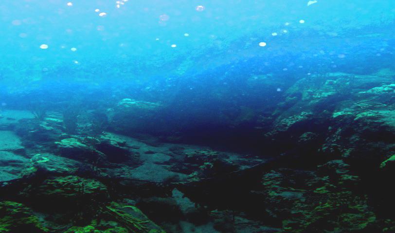 Подводные ландшафты: сафари 2017